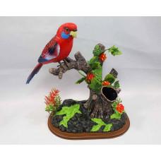 Музыкальный попугай